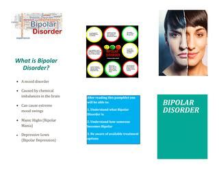A research paper focused on bipolar disorder